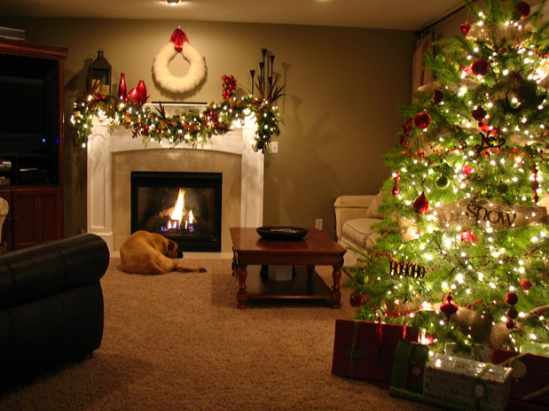 Image Result For Dream Living Rooms